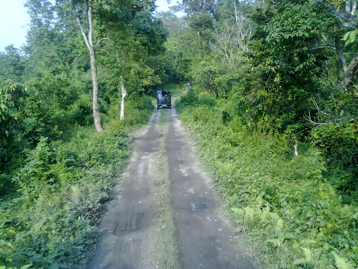 Jeep Safari in Gorumara