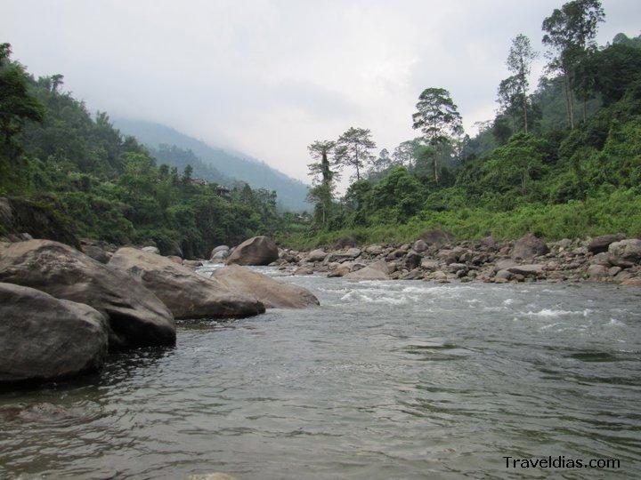 Jhallong - Dooars
