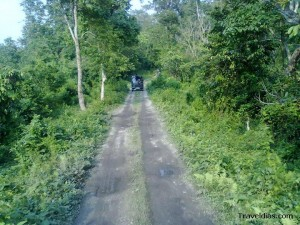 Gorumara park jeep safari