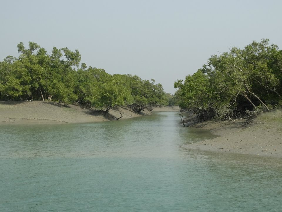 Sundarbans Boat Safari