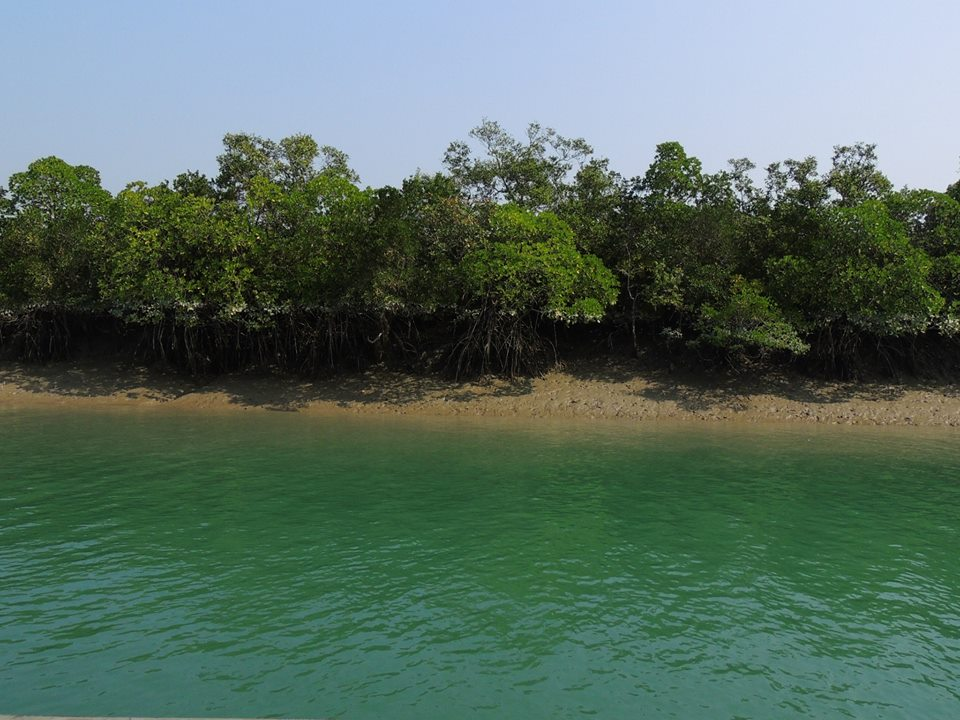 Sundarbans Tour Plan