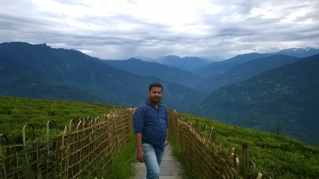 Temi tea garden-south sikkim